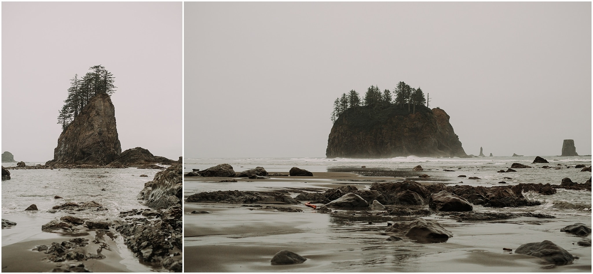 la push, olympic peninsula, elopement, kim butler
