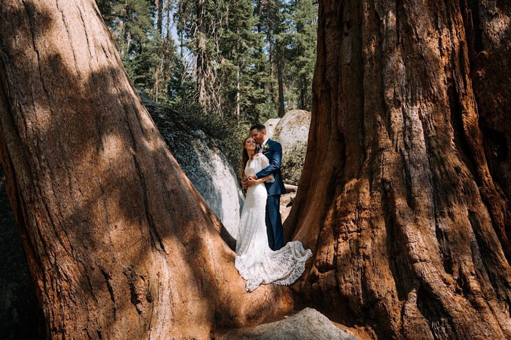 A Sequoia National Park Elopement with Pizza
