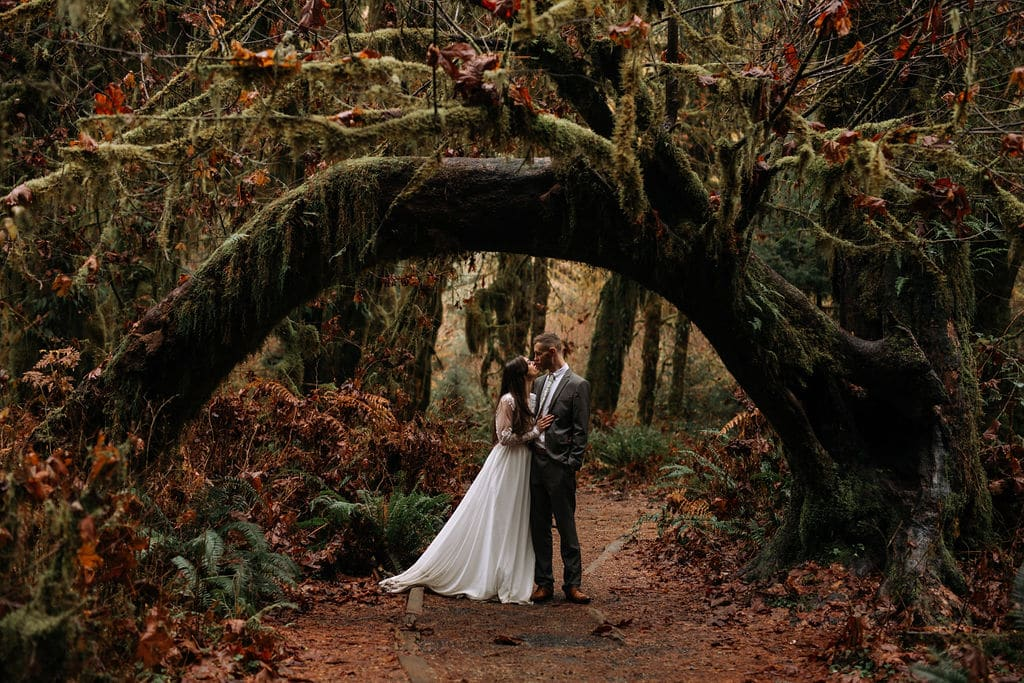 Elopement in the Hoh Rainforest in Olympic NP